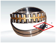 Double- row Cylindrical Roller Bearings